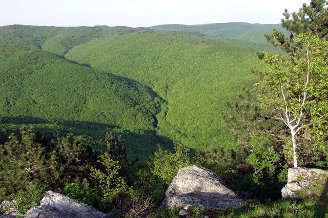 De bergen ten noorden van Slavonski Brod